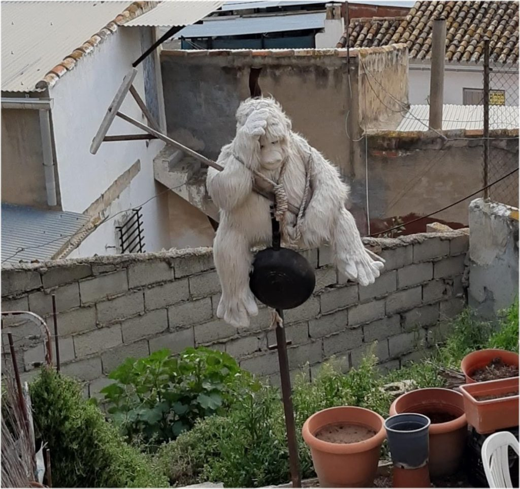 Mono en Calasparra